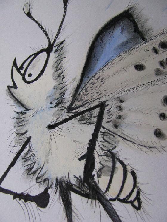 papillon008017.jpg